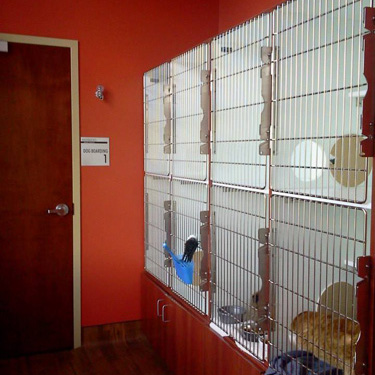 Mercy Animal Hospital   Monroe, NC 28110 > Our Services