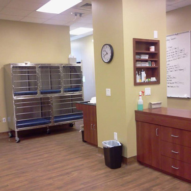 Mercy Animal Hospital | Monroe, NC 28110 > Our Services